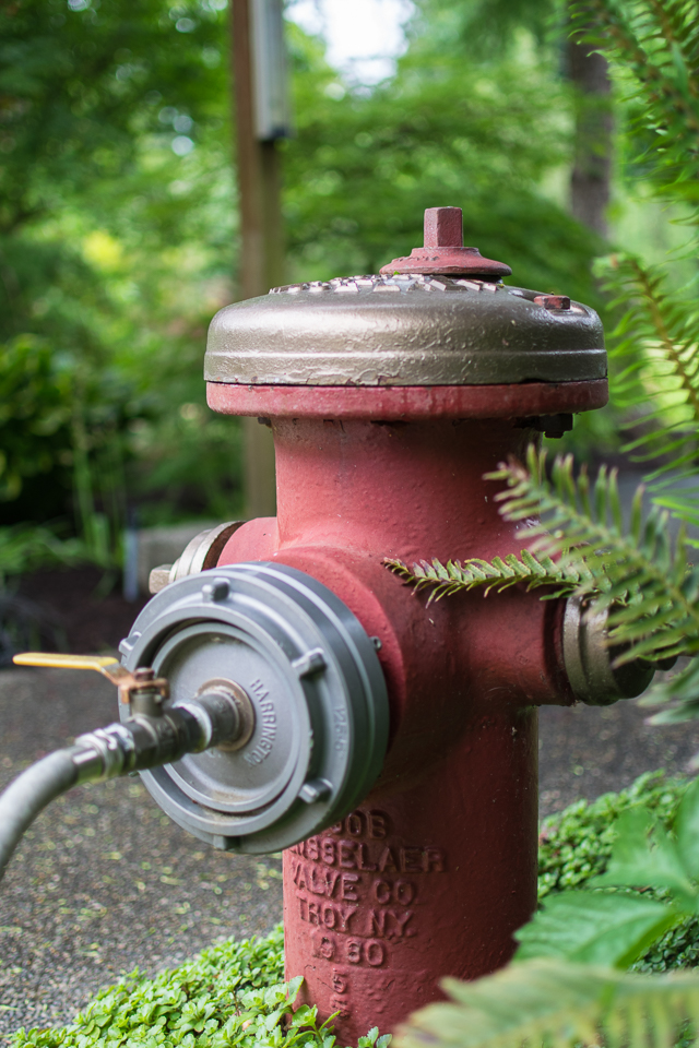 Fire hydrant 05.2016-5108